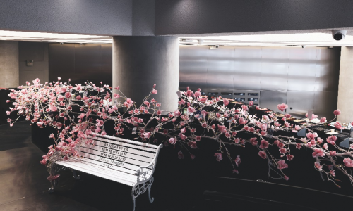 HARMAY話梅携手Maison Margiela马吉拉香氛:用香气唤醒春日美好